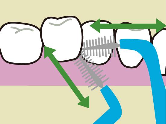 歯間ブラシの使い方2