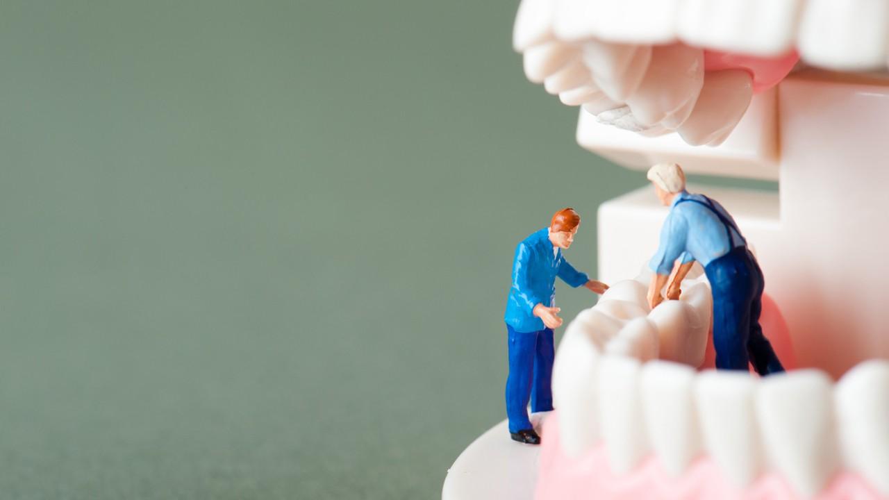 歯を治す人