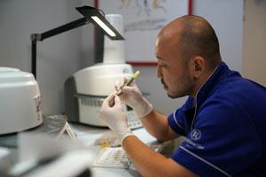 常勤歯科技工士募集