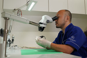 歯科技工士求人